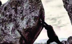 Debes empujar la roca aunque sientas que pierdes las fuerzas